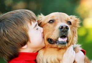 Отношения собаки с ребенком
