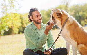 Поведение собаки с человеком