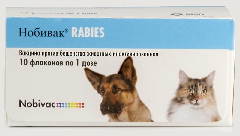 Показания и способ применения вакцины Нобивак для собак