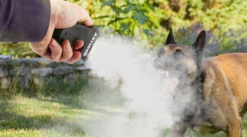 Классификация средств защиты от собак
