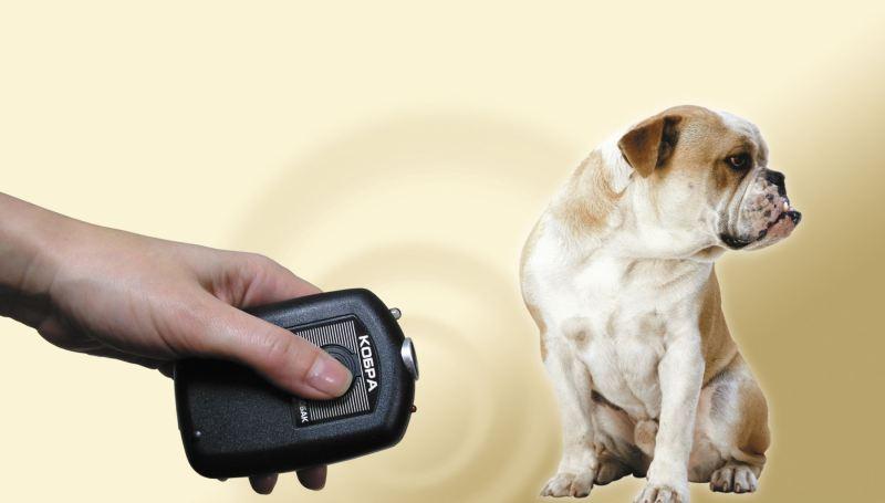 Как функционирует отпугиватель собак