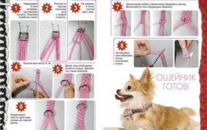 Пошаговая инструкция плетения ошейника