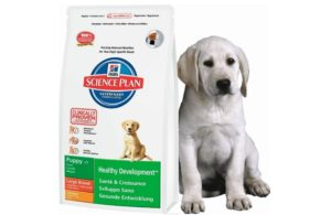 Гипоаллергенный корм для домашних собак хиллс