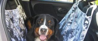 Автогамак для перевозки собак 4