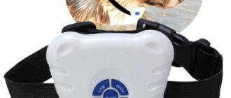 Ошейники «антилай» и дрессировочные для собак 1