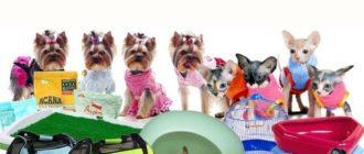 Какие зоотовары нужны для щенков 4